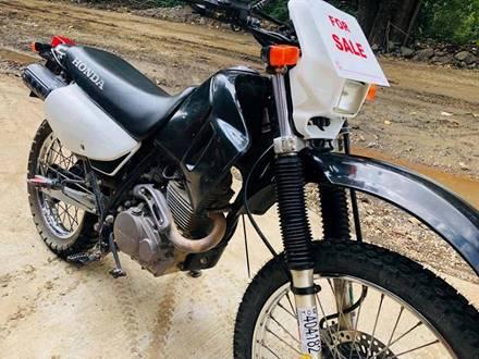 Images of Honda XL200