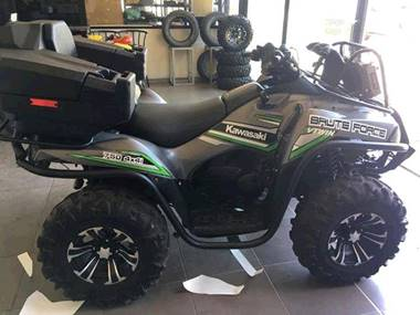 Picture of Kawasaki Brute Force