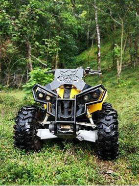 Picture of Can-Am Renegade