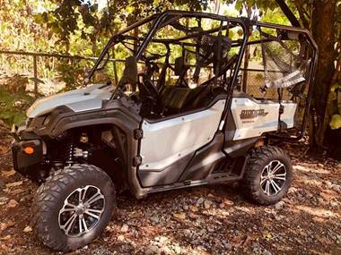Picture of Honda Pioneer