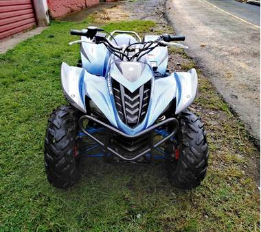 Picture of Yamaha Wolverine