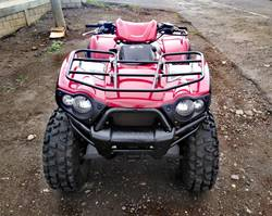 Images of Kawasaki Brute Force