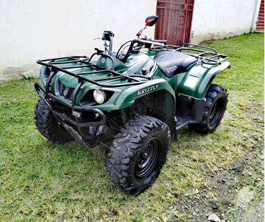 Picture of Yamaha Grizzly