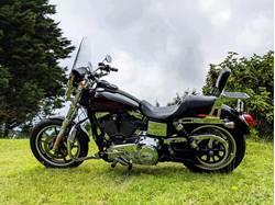 Images of Harley-Davidson FXDL DYNA LOWRIDER